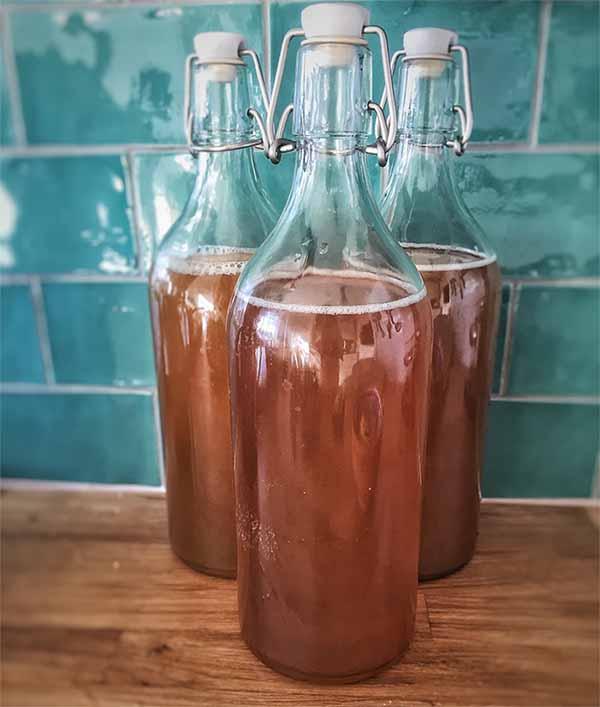 bouteille de kombucha faite maison