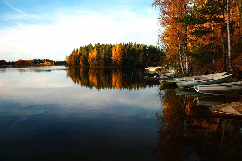 peche et camping a l'automne