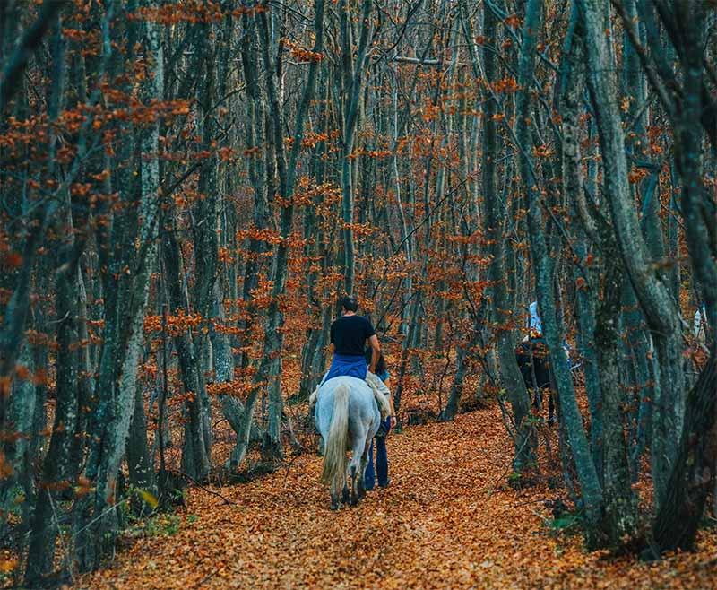 une belle balade à cheval