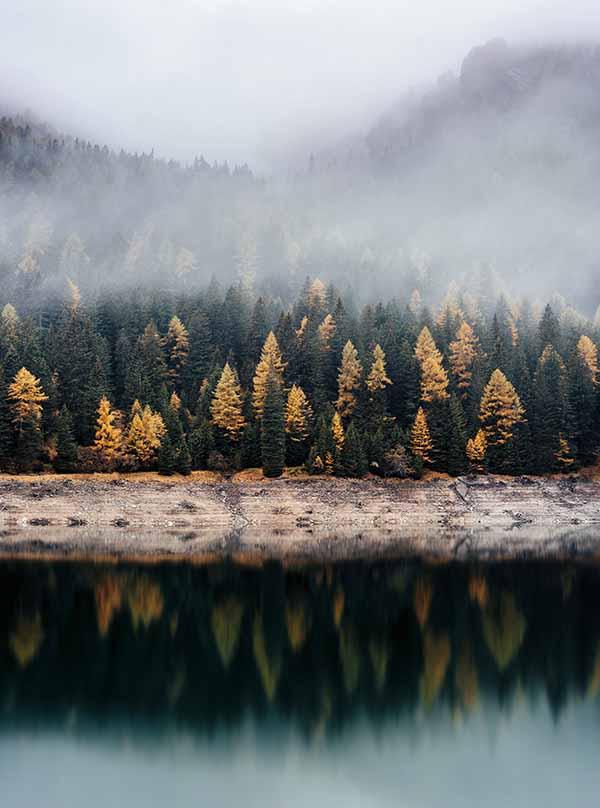 camping à l'automne