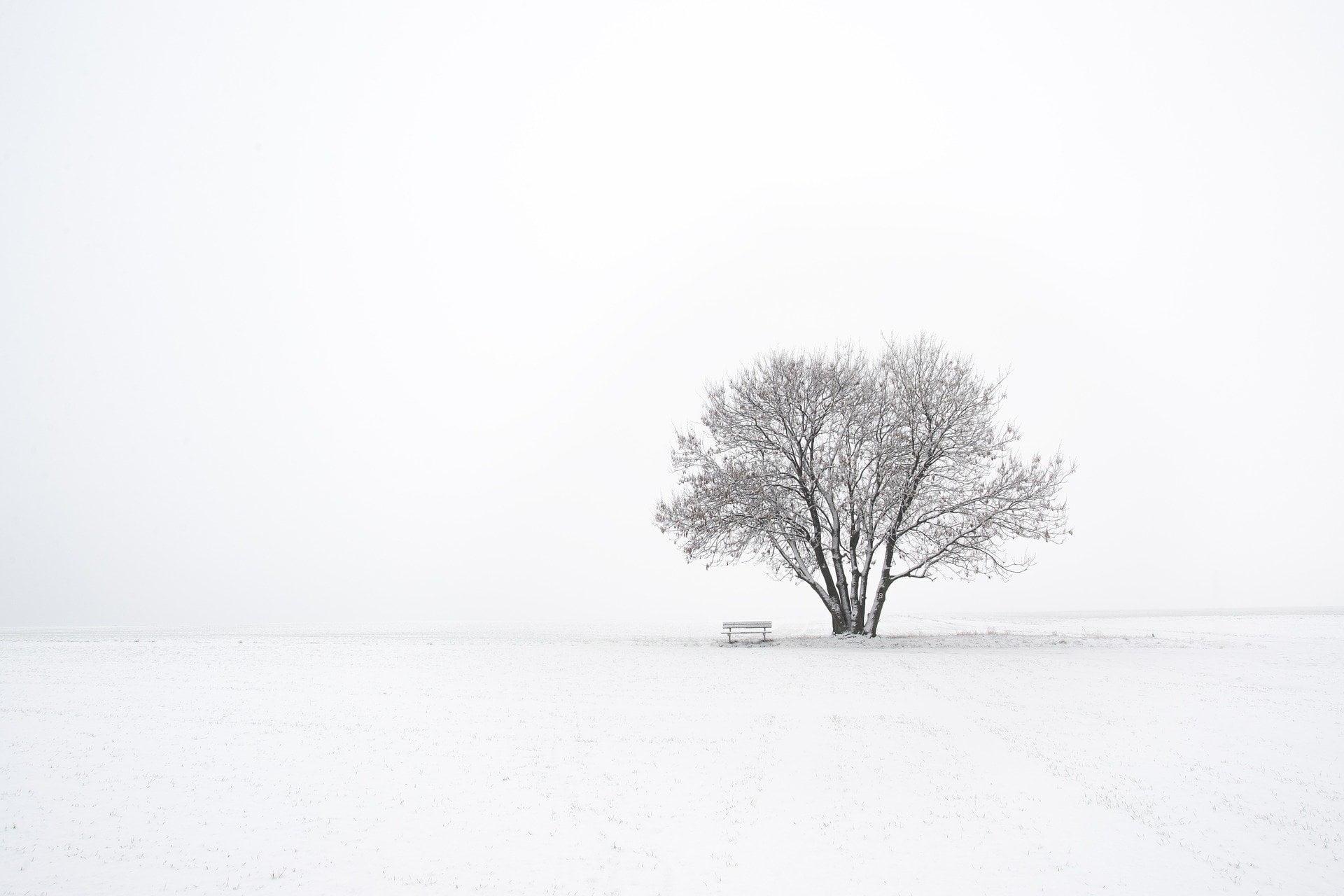 winter-3974511_1920